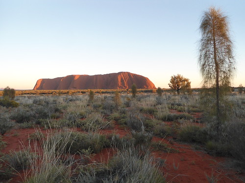 Red Centre Holiday 2016: Day 7 - Talinguru Nyakunytjaku