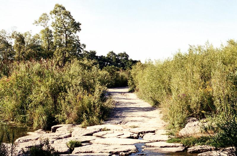 Bluffer's Park Trail