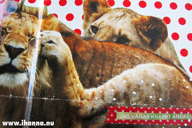 Art journal detail: lioness, by iHanna