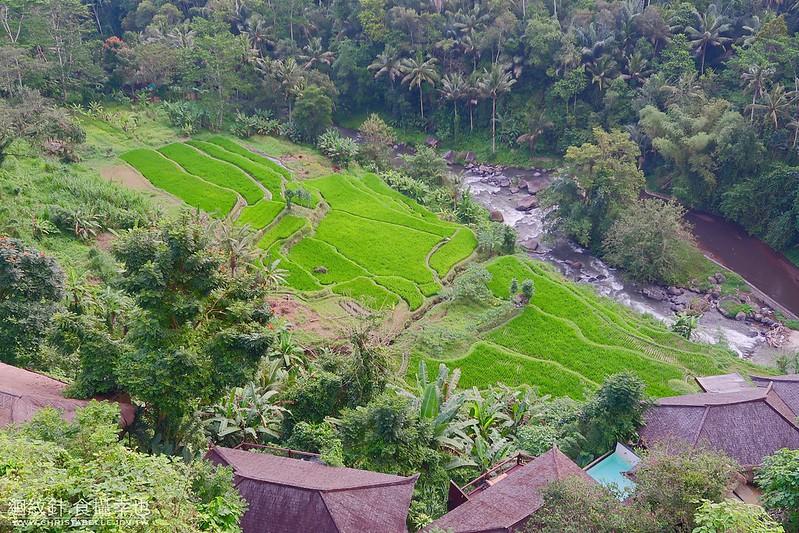 Bali 峇里島