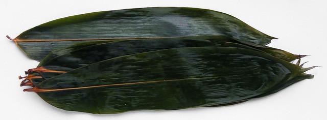 bamboe-blad weken