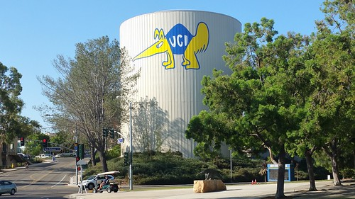 Peter the Anteater UC Irvine