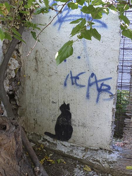 et un troisième chat !