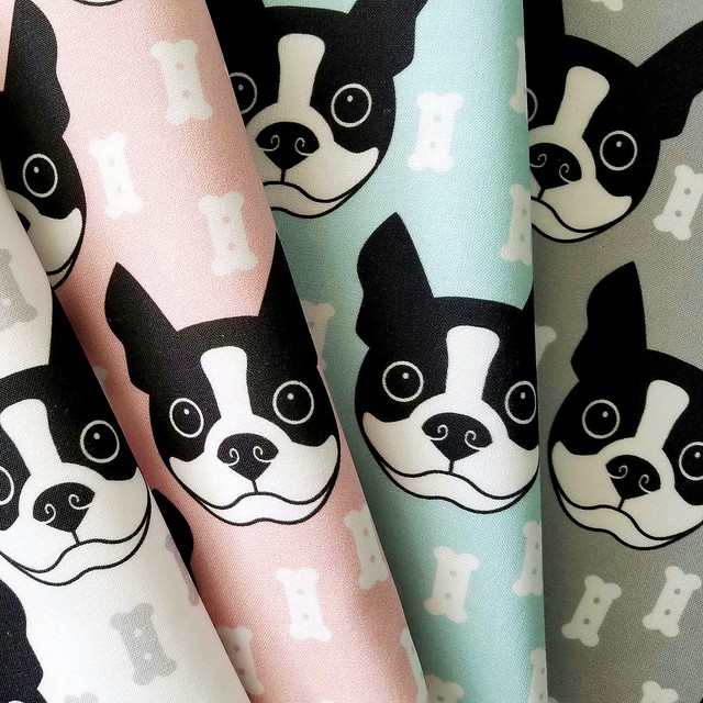Boston Terrier And Dog Biscuits On Grey Background Fabric