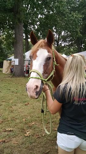 Festival on the Green, Crofton, Maryland, September 24, 2016
