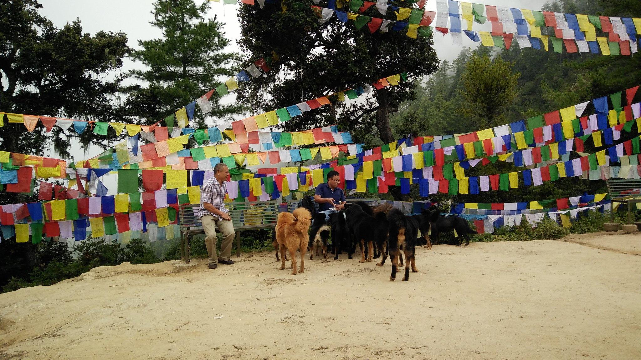 10 dieu ve bhutan trip (23)
