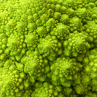 fractal food
