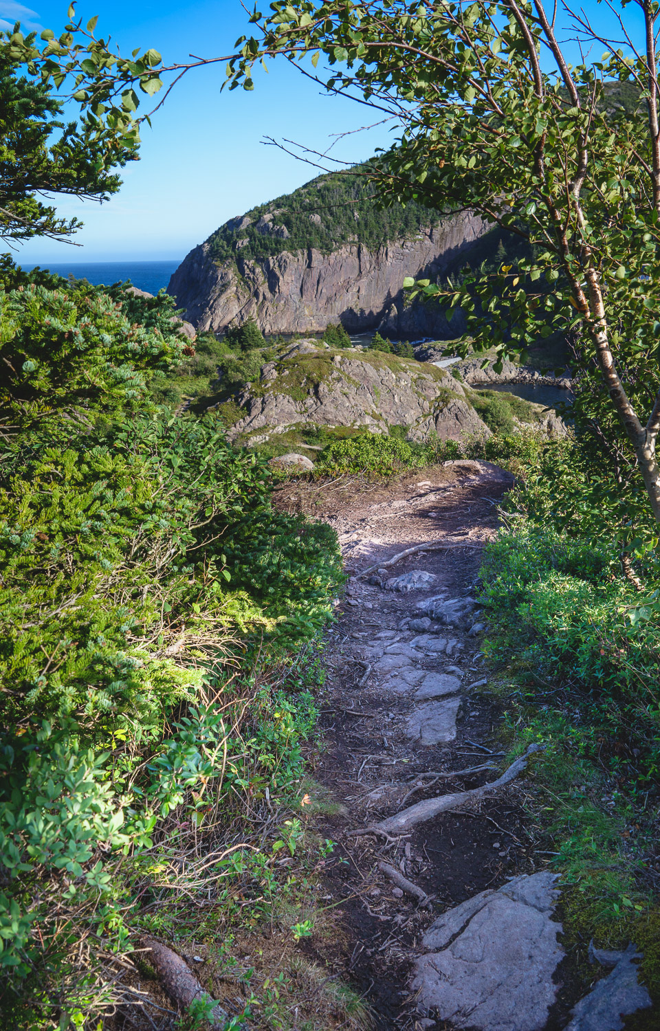East Coast Trail NL