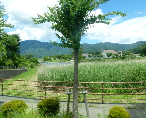 jp16-Fuji-Saiko sud (3)