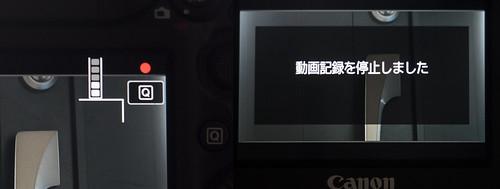 EOS 5D Mark IV_4K_04