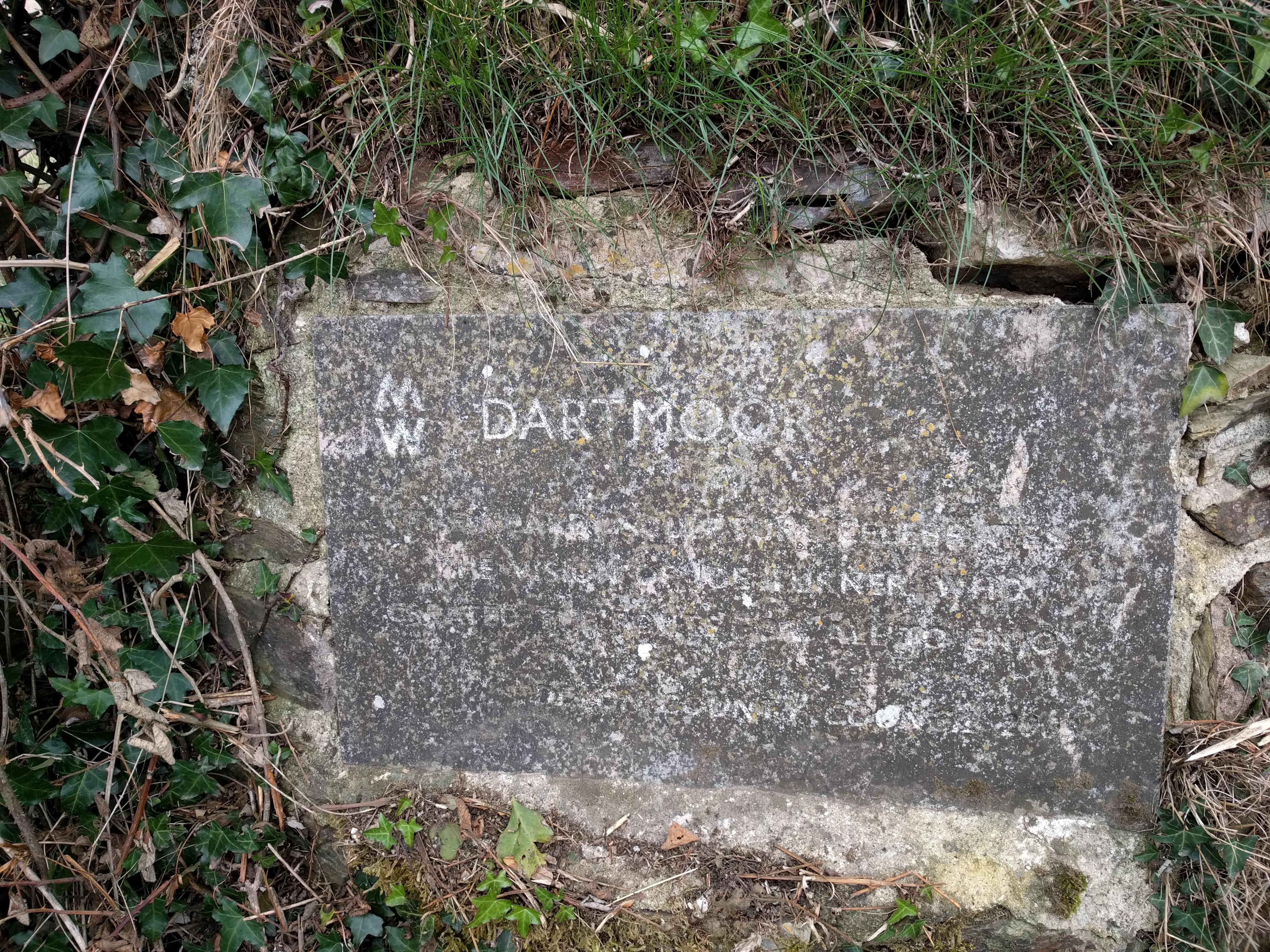 Dartmoor! #sh #twomoorsway