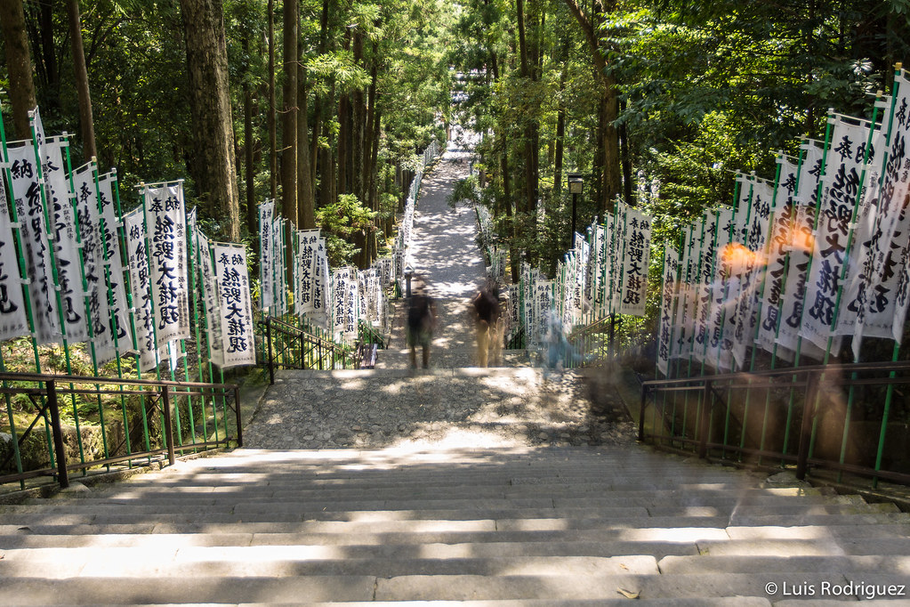 Hongu-Kumano-Kodo-69