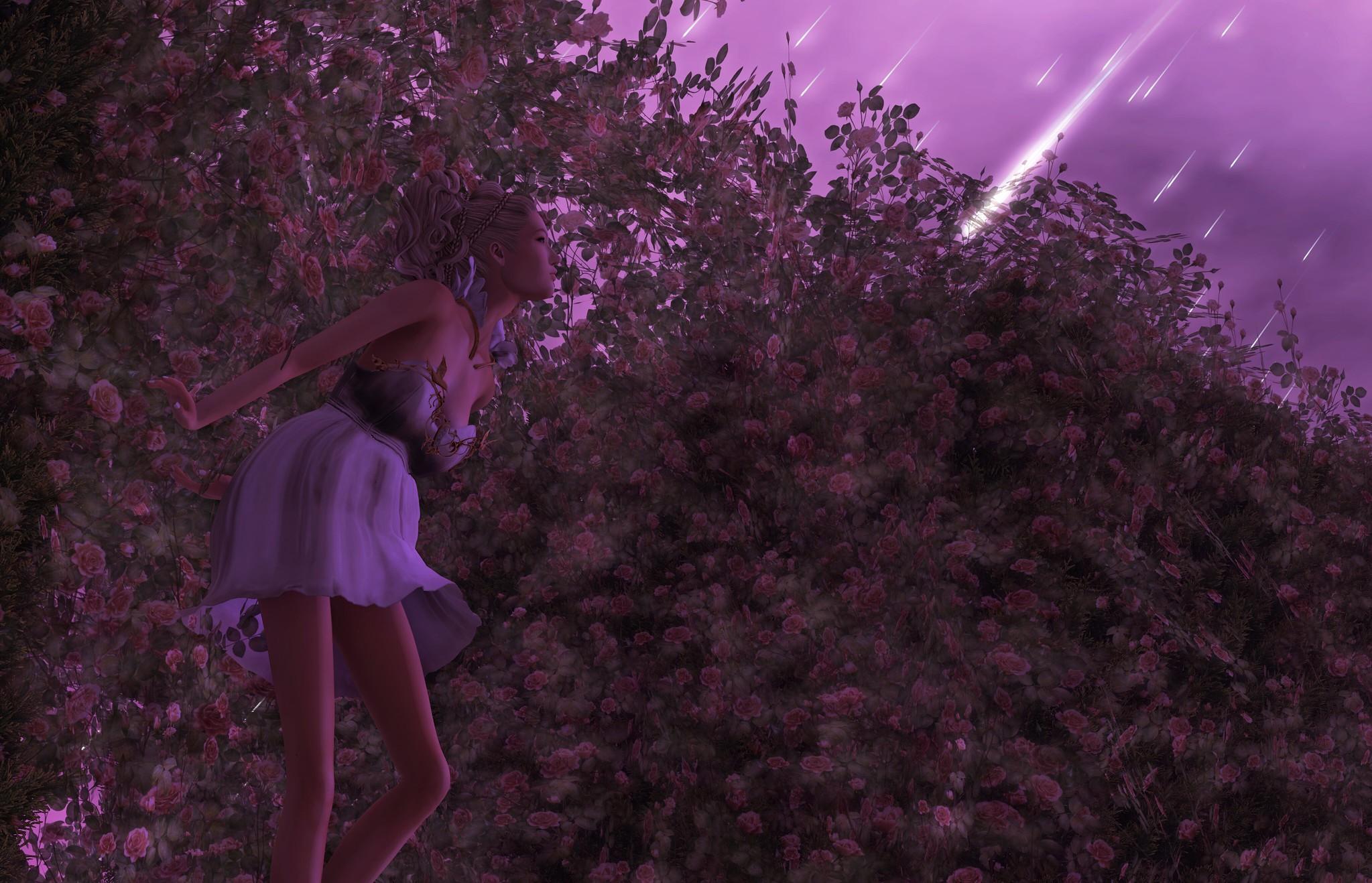 244. | Stargazing