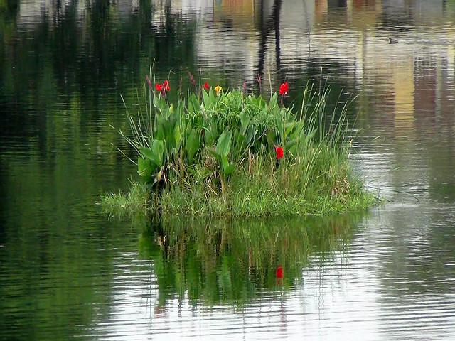 इस तालाब में तैरते हरियाली का भी मॉडल बनाया गया है
