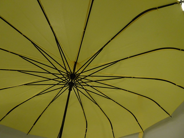 The Geometry of an Umbrella