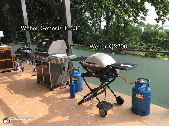 Weber Grill Types 1