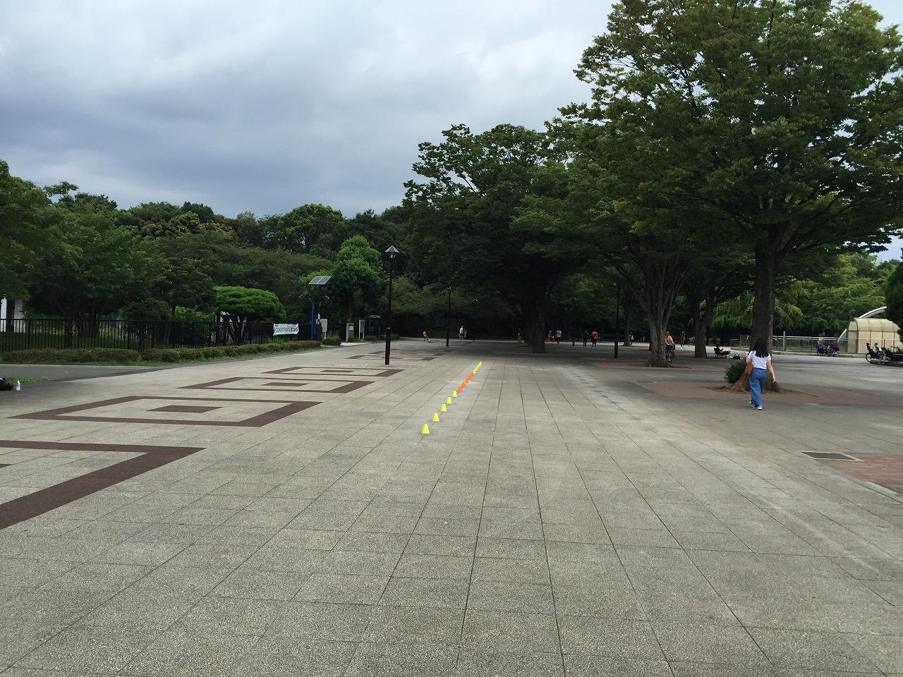 20160815_光が丘 (1)