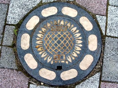 Ichikawa Hyogo, manhole cover 3 (兵庫県市川町のマンホール3)
