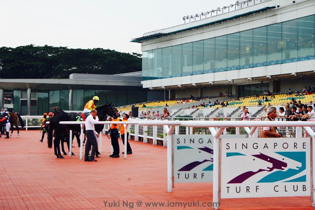 Emirates Singapore Derby 2016SAM_9797 35redfashion_yuki ng
