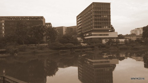 Khoo Teck Puat Hospital and Yishun Pond