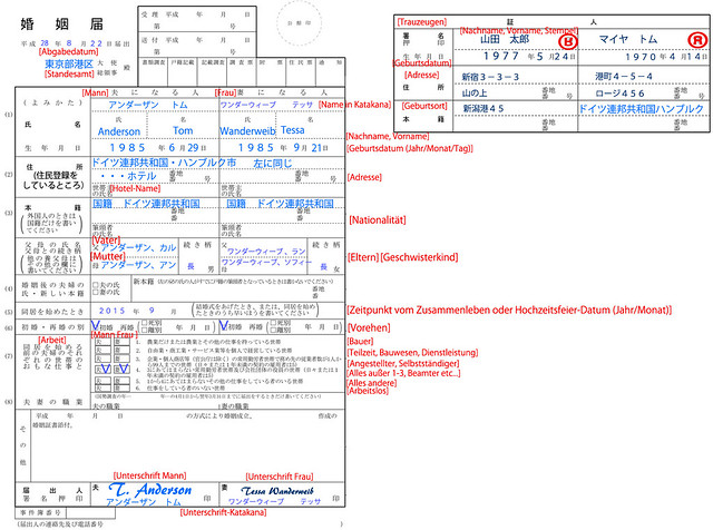 12konin_example_v2