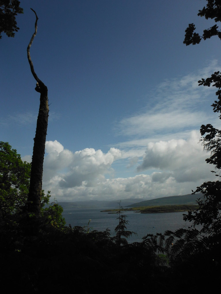 Around Tobermory 4