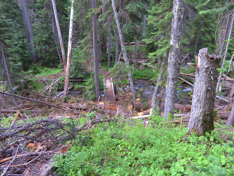 Footbridge over Fifteenmile Creek