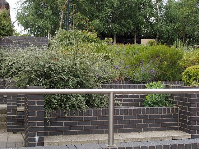 Didcot town centre planters: Incredible Edible Didcot project