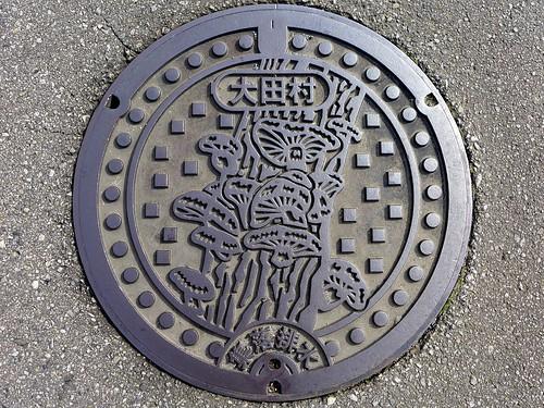 Ota Oita, manhole cover (大分県大田村のマンホール)