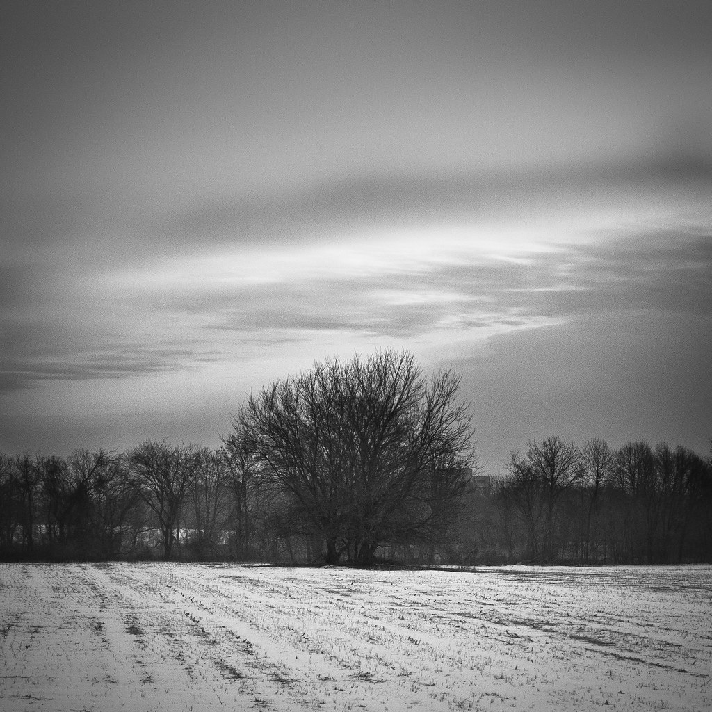 Winter Morning | Cloud Front