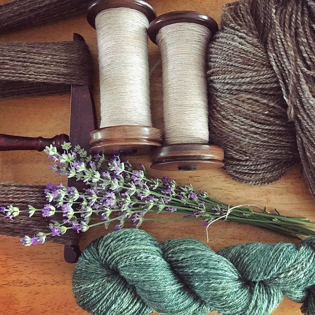 Spinning progress. With lavender. 💜 Tour ends Sunday, not sure if I should start something new. #tourdefleece #teamcatitude #spinning