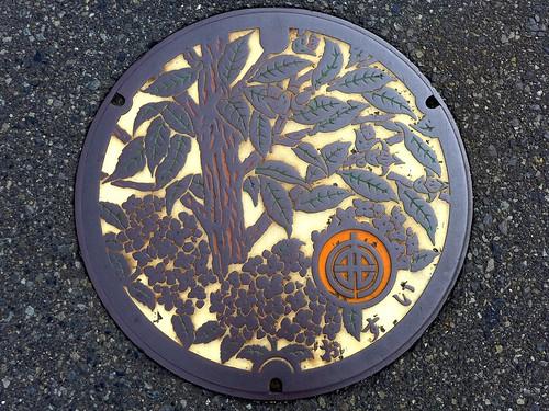 Kaisei Kanagawa, manhole cover (神奈川県開成町のマンホール)