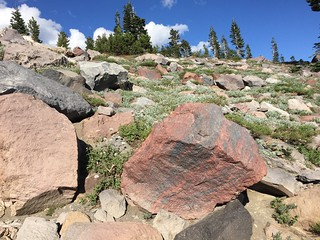 Mount Shasta Volcanic Rocks August 2016