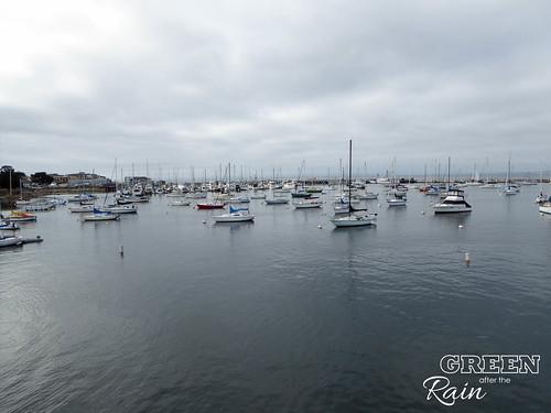 160702h Old Fishermans Warf Monterey _06