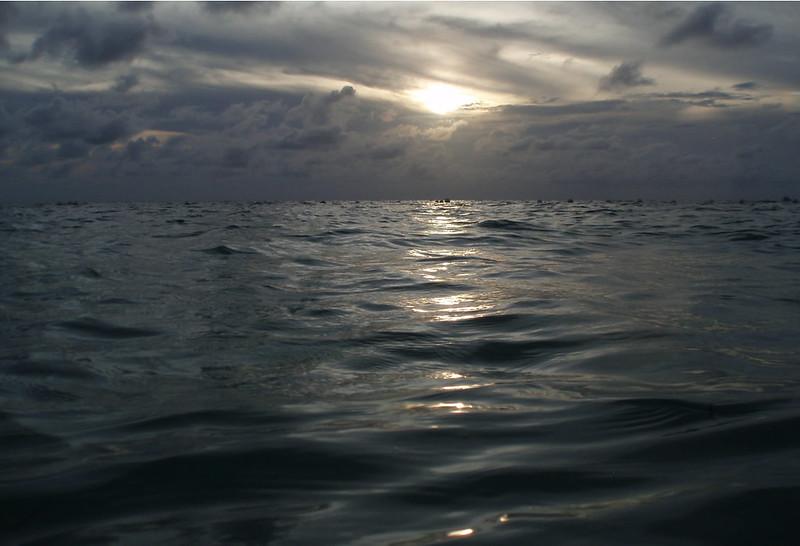 Rumbo a una inmersión nocturna.