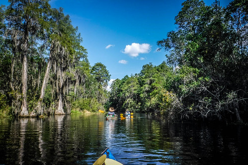 Lowcountry Unfiltered at Okefenokee-166