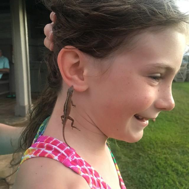 Live lizard earrings