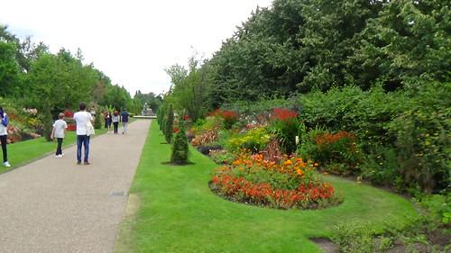Regent's Park The Avenues July 16 (1)