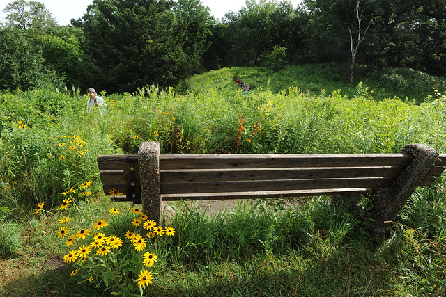 Bench at Eloise Butler Wildflower Center