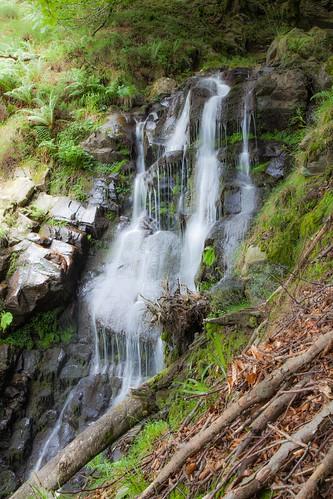 Parque Natural de #Gorbeia #DePaseoConLarri #Flickr - -7966