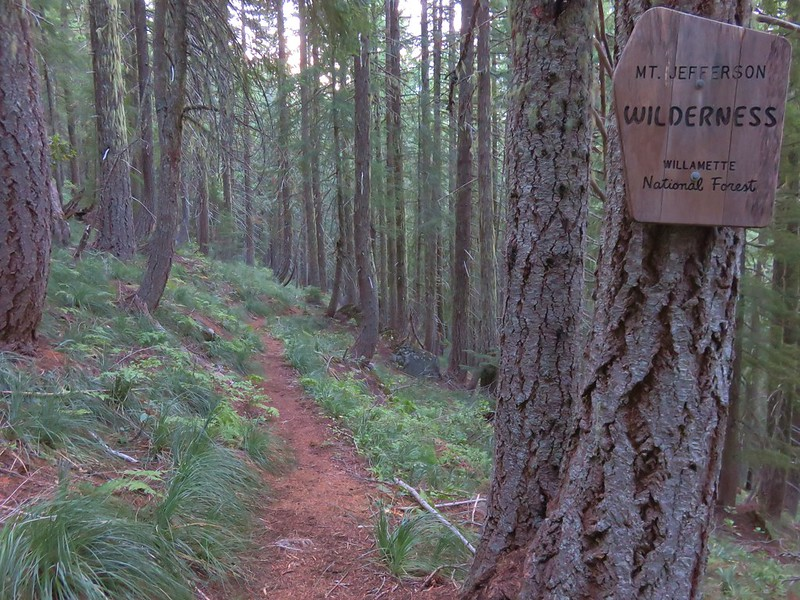 Entering the Mt. Jefferson Wilderness on the Woodpecker Ridge Trail