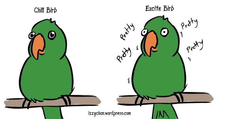 chill parrot birb excited birb eyes