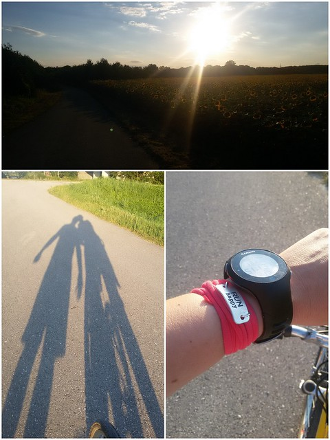 2016-07-19 Evening cycling