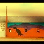 trex rock shop