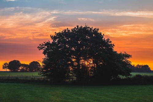 Ranton Sunrise