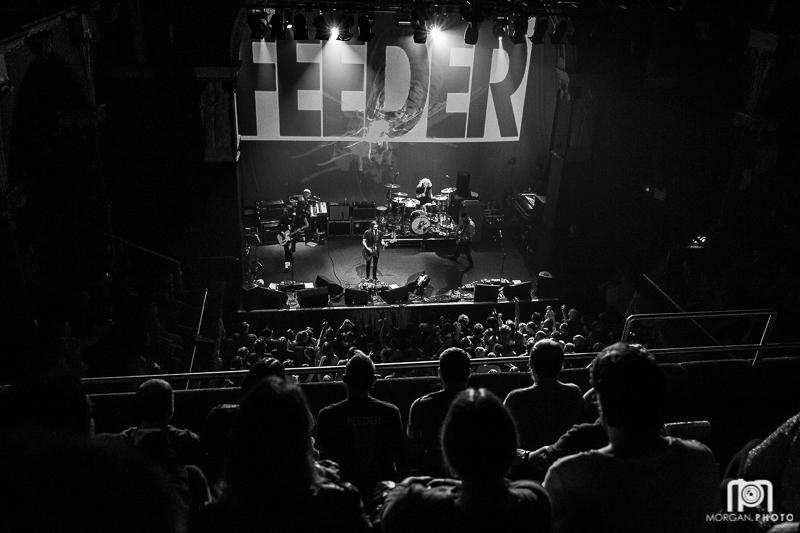 feeder-13