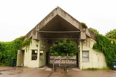 Таллинский зоопарк. Tallinna Loomaaed.