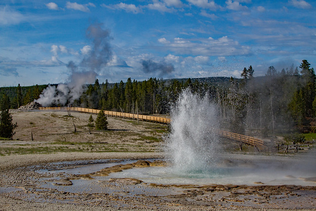 Upper Geyser Basin: Yellowstone National Park
