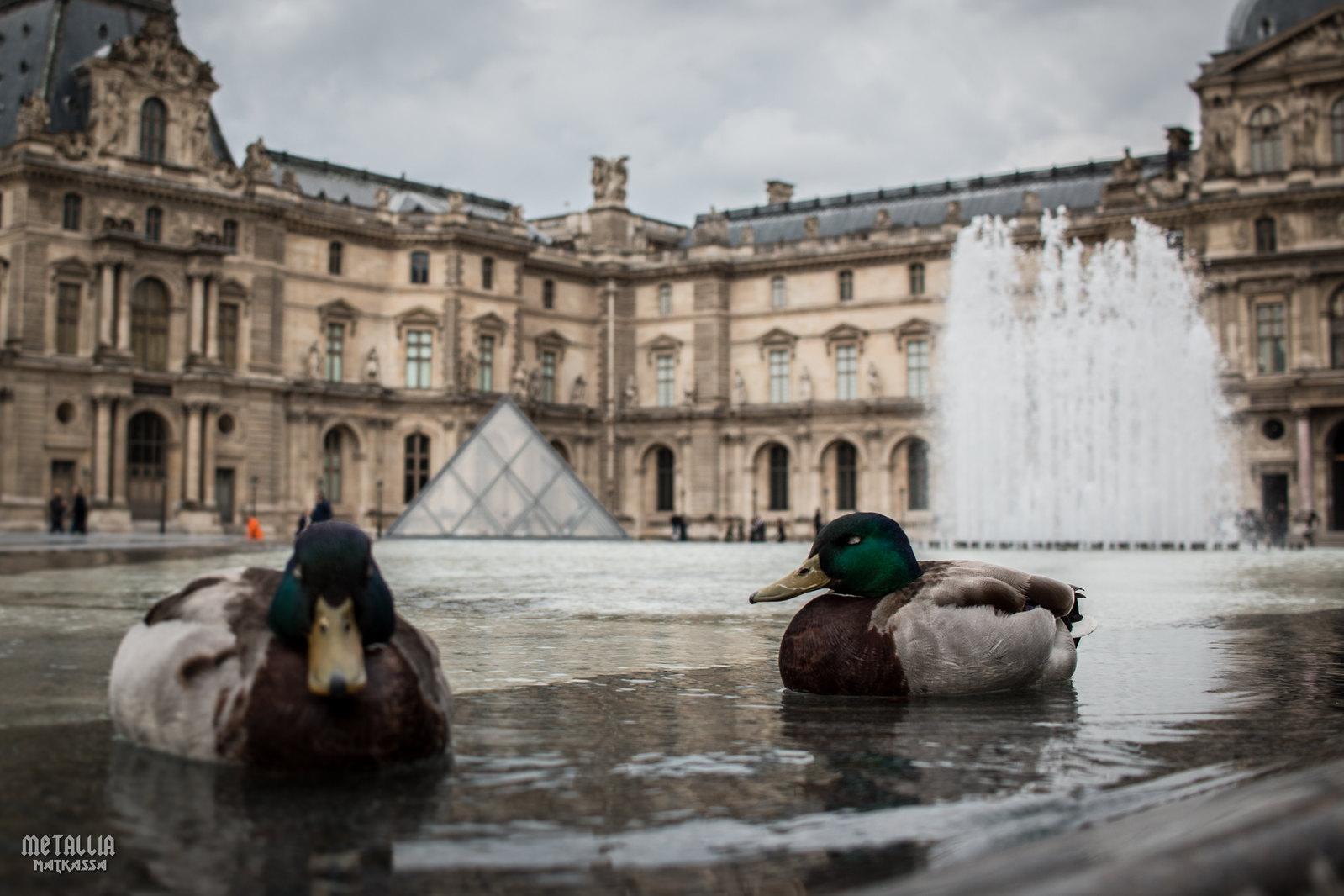 sights in paris, pariisin nähtävyydet, louvre