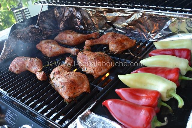 Cuisses de Poulet au Barbecue Parfumées au Tandoori  © Ana Luthi Tous droits réservés 004